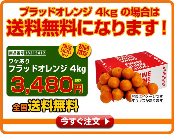 ブラッドオレンジ4kgの場合は送料無料になります!