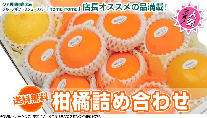柑橘詰め合わせ
