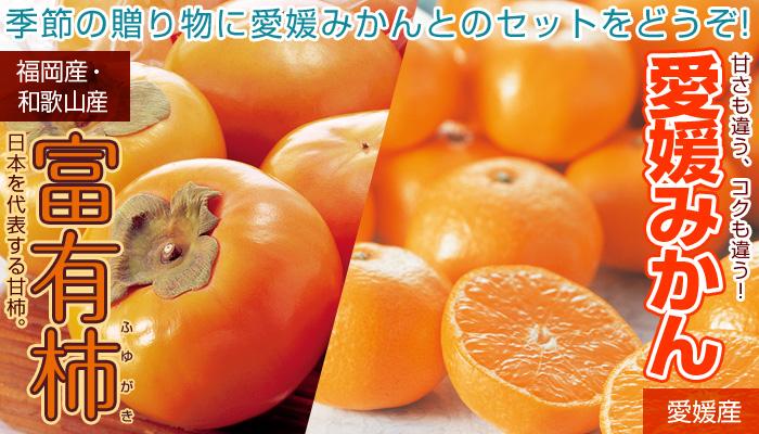 富有柿と愛媛みかんの詰合せ