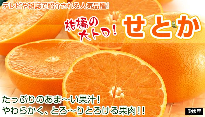 せ の とか ま 果樹 園 福島県の果樹園一覧