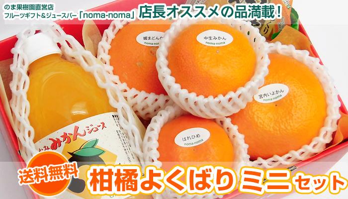 柑橘よくばり(ミニセット)