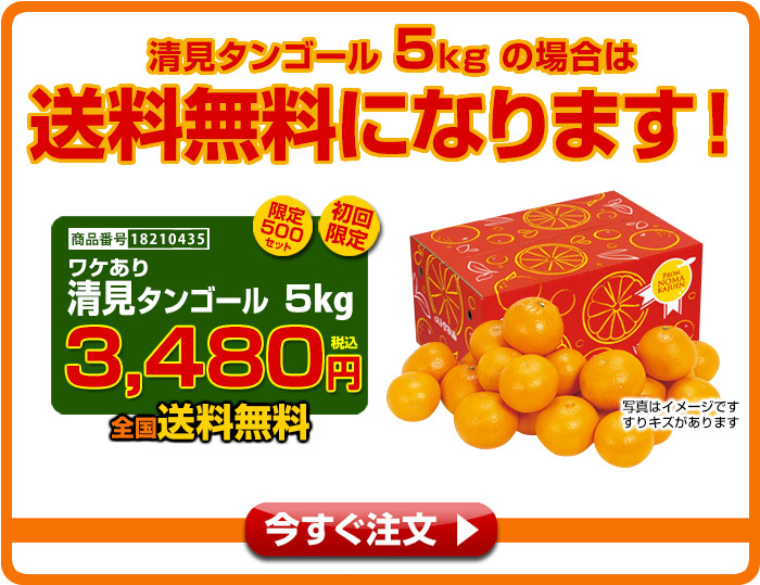 清見タンゴール5kgの場合は送料無料になります!