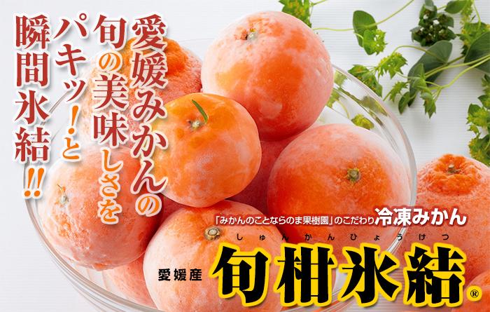 冷凍みかん(旬柑氷結)