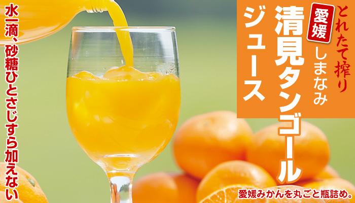 しまなみ清見タンゴールジュース